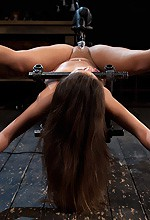 Jynx Maze - Jynx Maze on Device Bondage